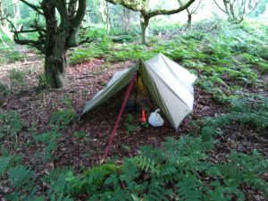 Tarp tent in forest